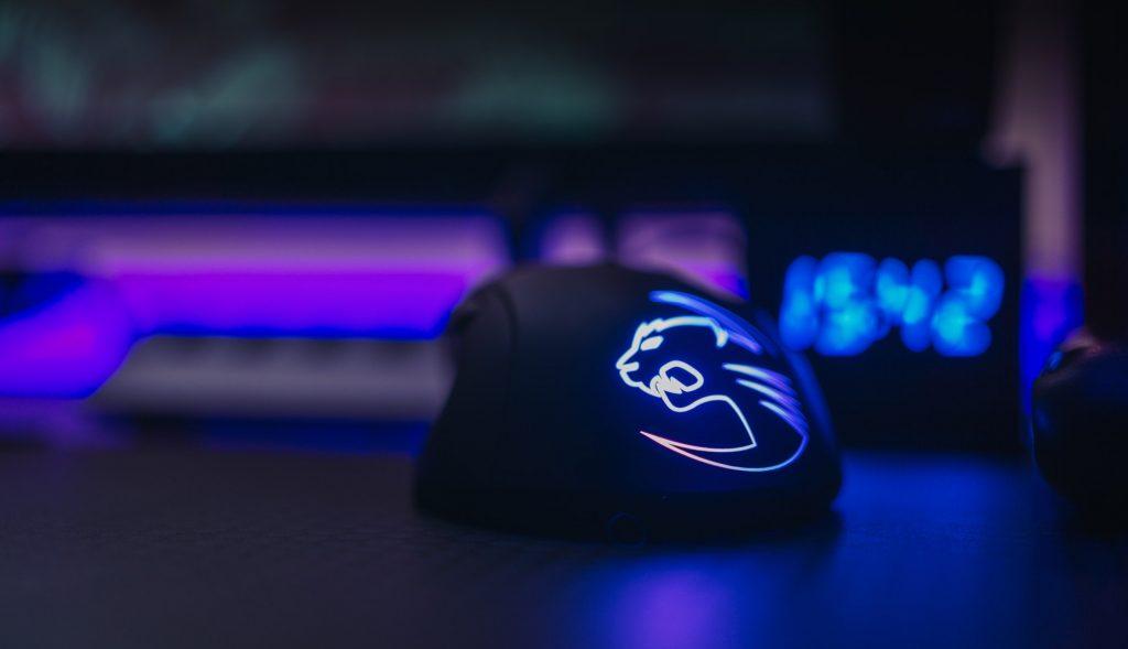 souris de gamer