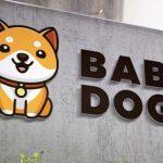 Investir dans le Baby Dogecoin : bonne ou mauvaise idée ?